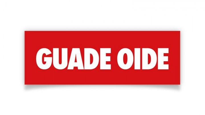 "Aufkleber ""Guade Oide"""